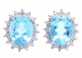 9ct White Gold Diamond And Blue Topaz Cluster Earrings 0.03 Carats